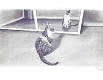 Black & White Cat Stuff