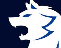 SFC Kaiser Logo Rebrand