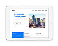 Website Redesign - Ebix