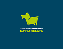 Ambulatorio Veterinario Gattamelata