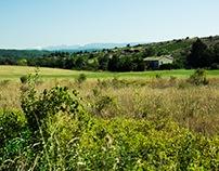 Roads&Landscapes_France_Summer15_SouthRoadTrip