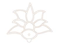 Lanternfly Logo Design & Website Banners