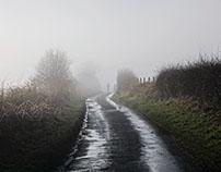 Misty walk II