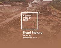 dead nature /brumadinho