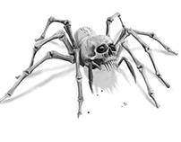 Spider skull - concept
