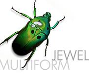 multiform jewel