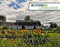 Livingston County Social Media Campaign