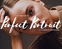 20 Perfect Portrait Lightroom Preset+Mobile Version