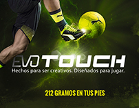 Puma Infografía