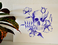 Ballpoint Pen Skull.