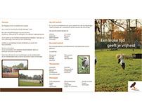 Recreational Domain New Design