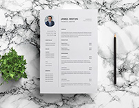 Free Financial Auditor Resume Template with Example