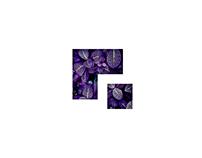 Sentient Pixel - Visual Identity