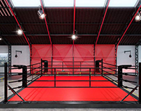 Design of a gym for boxing and MMA by ZOOI