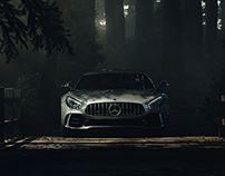 AMG GT, Deep Forest