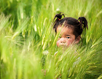 Tenzin Palmo, a young one in barley field, playground