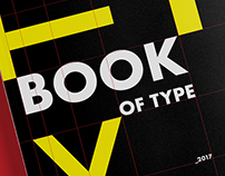 BOOK OF TYPE: A Multi-page Glossary
