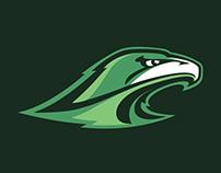 Hawks Logo Concept