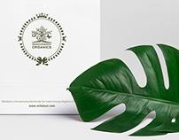 Green Energy Cosmetics