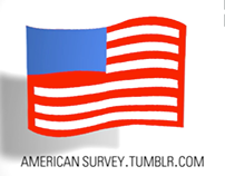 Variations on a Theme: American Survey Animation