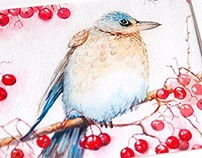 Birdie with berries