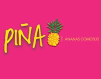Infografía (Piña) / Infographics (pineapple)