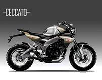 CECCATO X 650 CAFE' SCRAMBLER