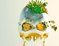 My Spring Skull