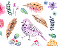 Watercolor flowers, feathers, bird and cake