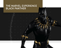 The Marvel Experience Black Panther