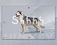 Shhhh (Siberian Huskey, Healthcare, Haircare, Hospital