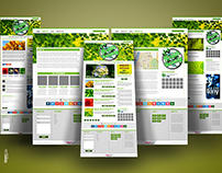 5 Pages Web Design + Logo Design, a Complete Solution!