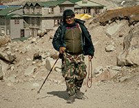 The Sherpa Story