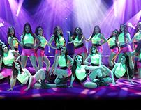 Wildcat Dance Troupe 2014-2015