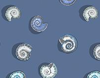 Hand drawn sea and molluscan shells patterns