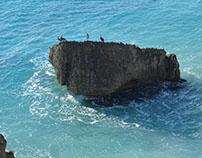 jamaicagif
