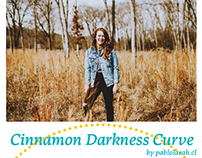 Free Photoshop Curve & LUT Cinnamon Darkness