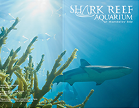 Shark Reef Aquarium Brochure/Booklet