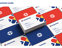 Konsus Branding Project: Veyonex