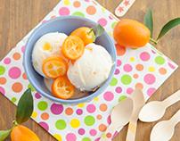 Yogurt Parlor website