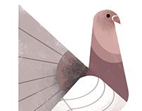 Geometric Birds pt.3