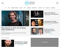 Media guru (concept)