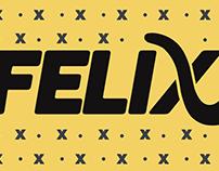 Felix: Illustration Style Guide