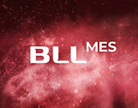 BLL-MES – промо-сайт компании