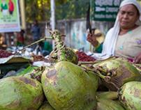 Healthy Cooler, Tender Coconut Water - India
