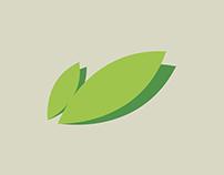 Primavera Italian Vegetarian Restaurant Branding