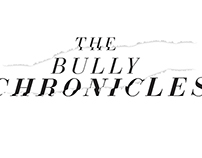 Bully Chronicles Logo Design Exploration