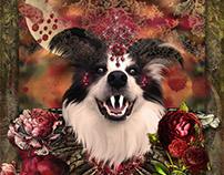 Hallowe'en 2017 - Nosferbella