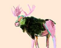 Moose watercolor , illustration, digital drawing