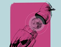 Moonbird.